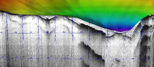 Low-frequency sub-bottom sonar profile draped beneath the bathymetric surface model facilitates visualization of sediment and alum deposits in a Municipal drinking water supply reservoir. (Cross-section view)